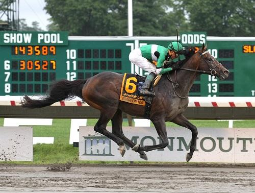 07-31-16 12 Exaggerator_Haskell_rd 500