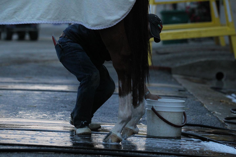 derby-bathing-3