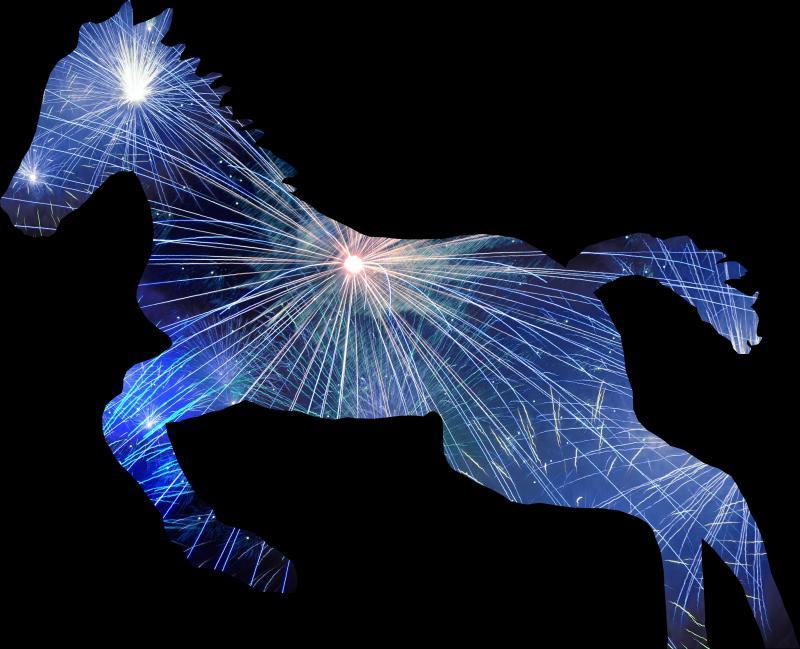 Fireworks Foal