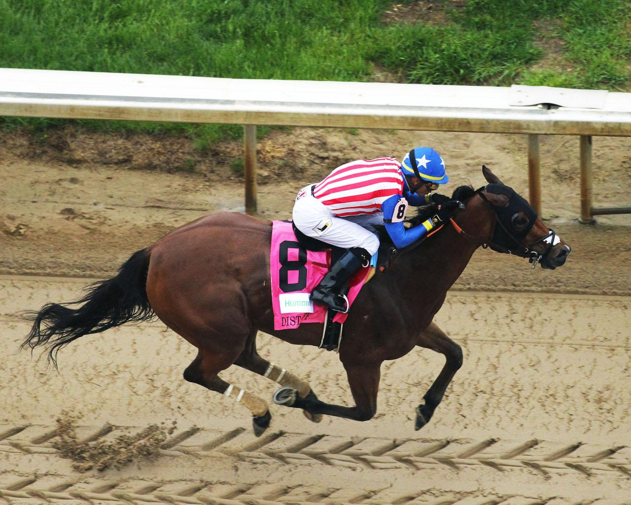 AMERICAN GAL - The Humana Distaff G1 - 32nd Running - 05-05-18 - R06 - CD - Aerial Finish 02