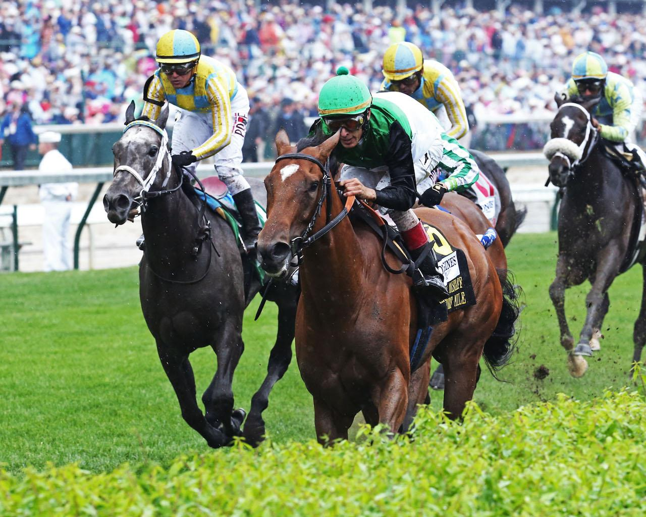 PROCTOR'S LEDGE - The Longines Churchill Distaff Turf Mile G2 - 33rd Running - 05-05-18 - R07 - CD - Inside Finish 02