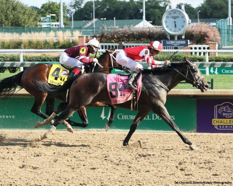 Cairo Cat (c) Churchill Downs/Coady Photography