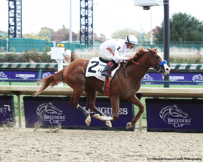 Improbable (c) Churchill Downs/Coady Photography