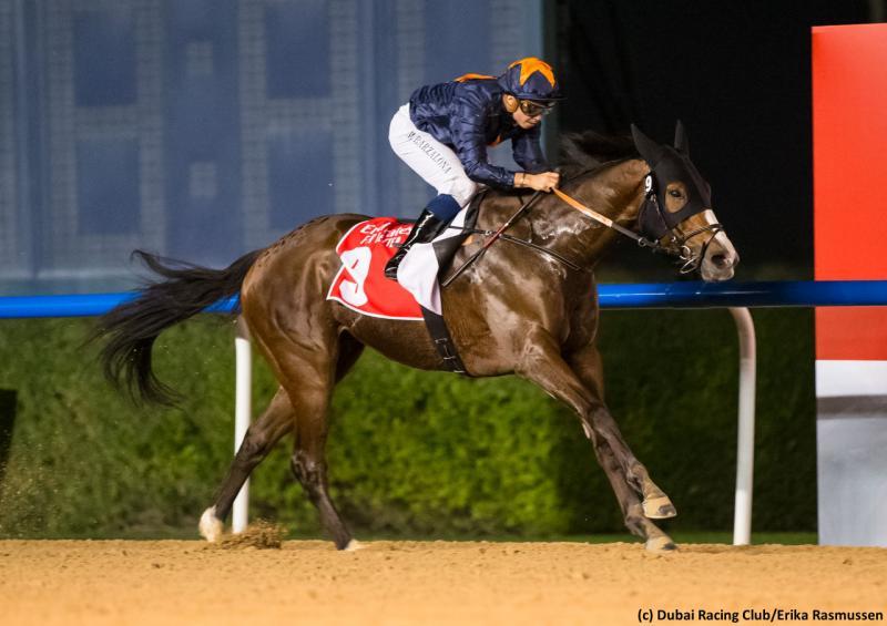 Capezzano (c) Dubai Racing Club/Erika Rasmussen