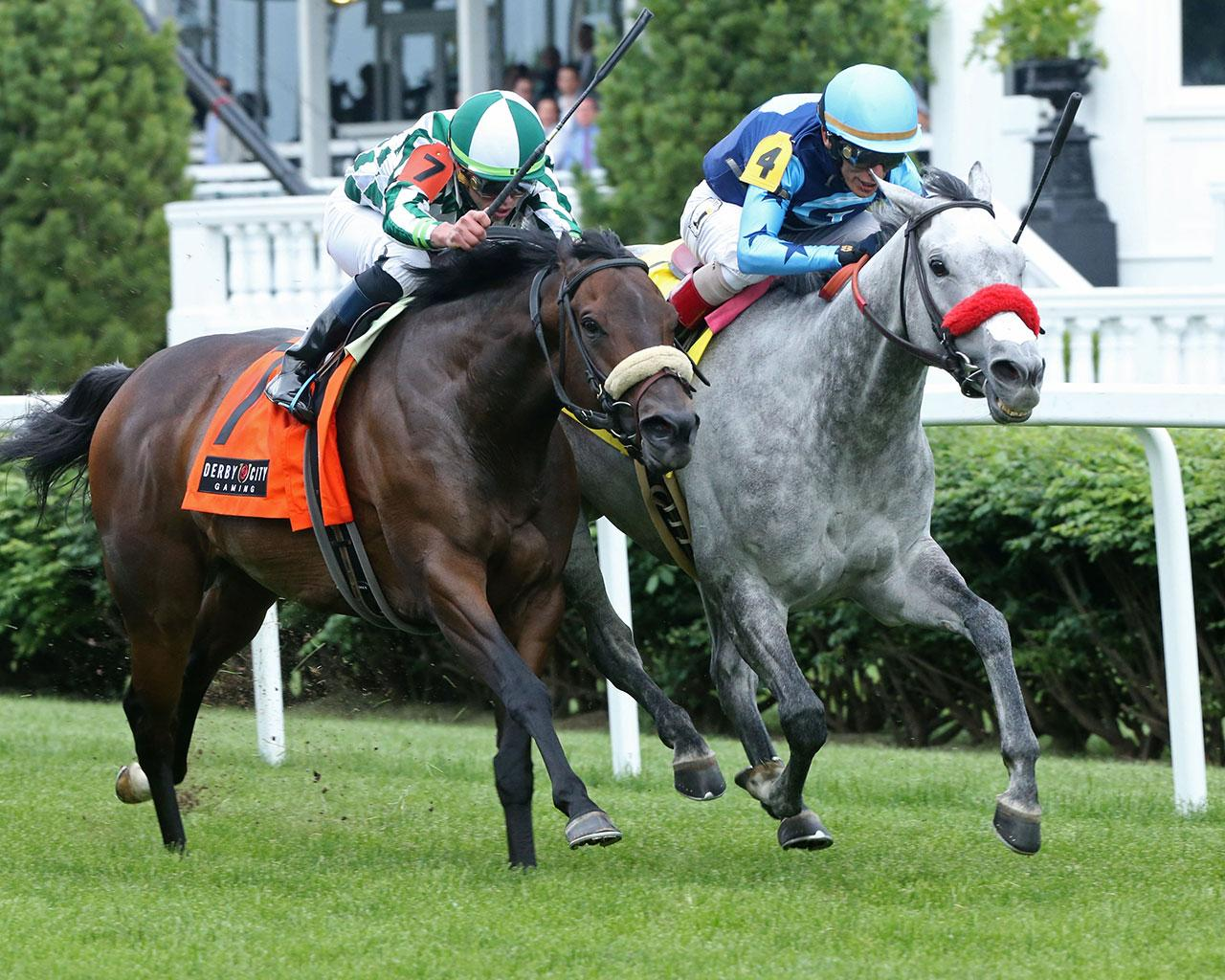 A-LITTLE-BIT-OF-ME---The-Unbridled-Sydney---9th-Running---05-02-19---R10---CD---Finish-02