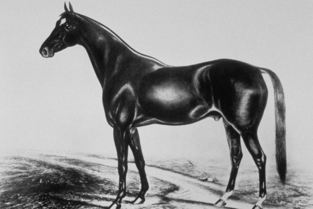 1875 image