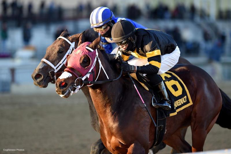 Shotski wins the Remsen Stakes