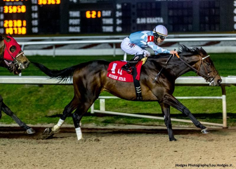 2-15-2020 - Modernist with Junior Alvarado aboard wins the…