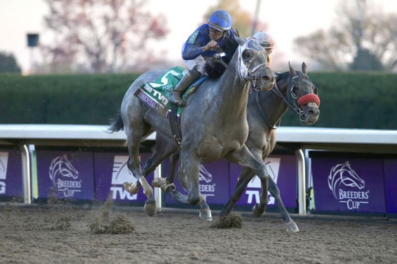 ESSENTIAL QUALITY (Horsephotos.com)