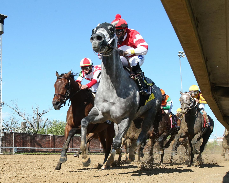 MALATHAAT---The-Kentucky-Oaks-G1---147th-Running---04-30-21---R11---CD---Under-Rail-First-Turn-01