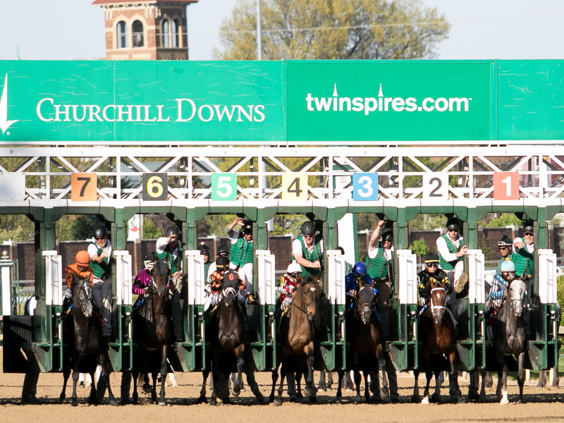Ultimate Road to the Kentucky Derby Racing Guide