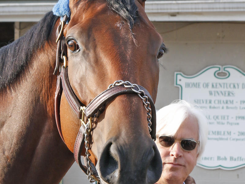 American Pharoah, Rest Of Derby's Top Three Have Preakness On Radar