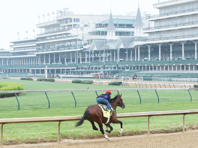 Brody's Cause, Tom's Ready, Fellowship Work at Churchill; Nyquist Breezes at Keeneland