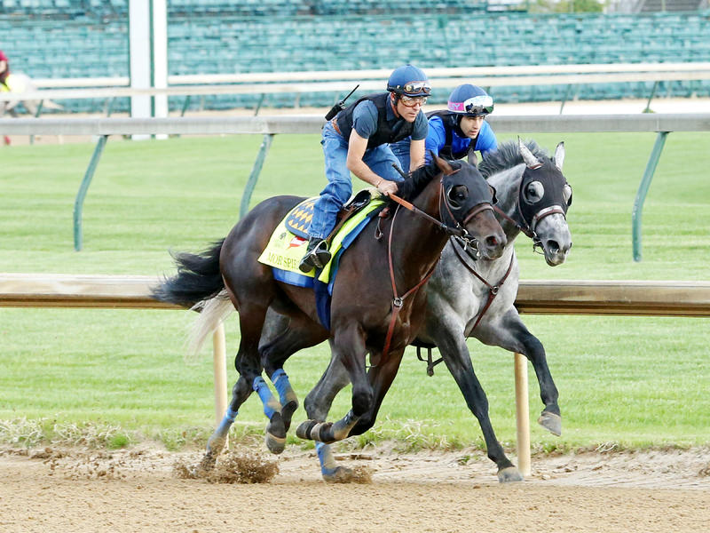 Mor Spirit Zips Five Furlongs Under Jockey Gary Stevens