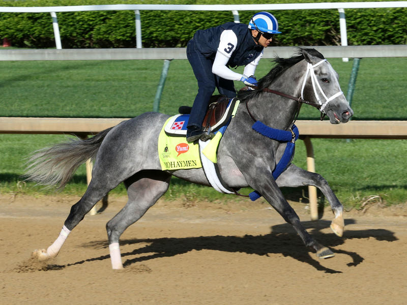 It's Showtime: 13 Kentucky Derby Hopes Work, Five Oaks Breezes