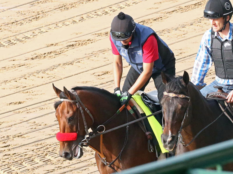 Unbeaten Nyquist Makes First Appearance Beneath Twin Spires