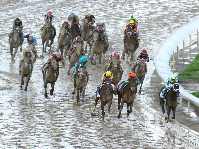 Kentucky Derby Follow-Up: Always Dreaming, But Few Others, Bound for Preakness