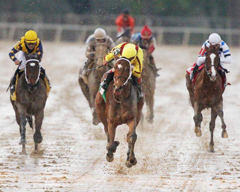 Route du Kentucky Derby/Kentucky Oaks 2016 808_terrapromessa3-12op7.9de6c7464a6c9d13b764640b046bb68c