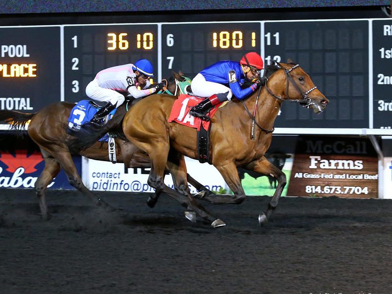 Albert Park (Coady Photo/Presque Isle Downs)