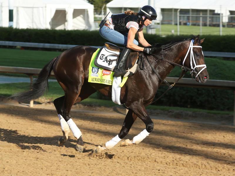 Pletcher Contingent Intact at Churchill Downs