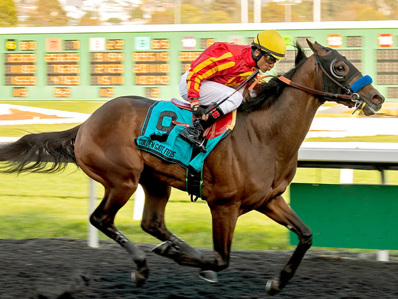 Azul Coast wins the El Camino Real Derby (Photo Credit: Vassar Photography)