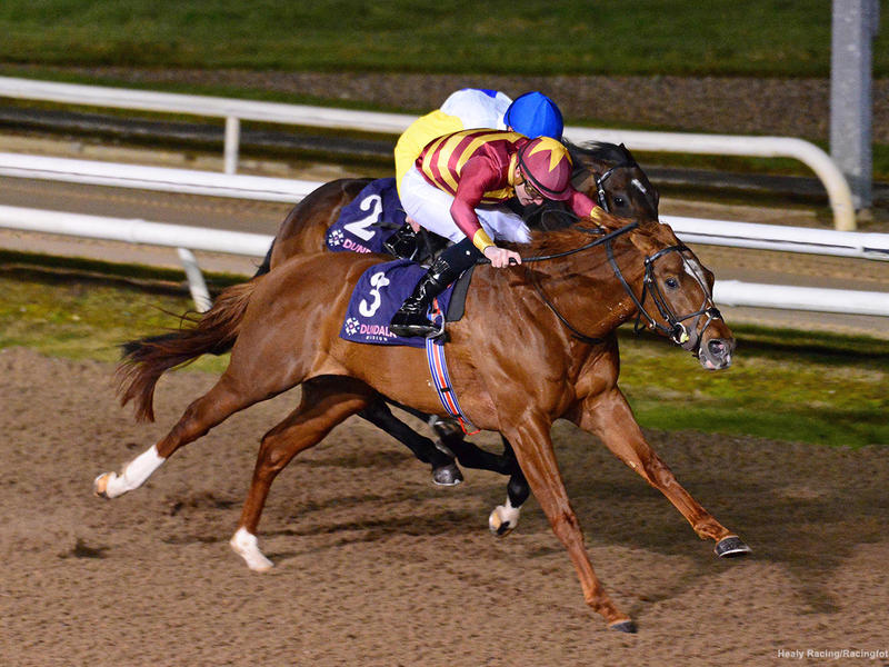 Crossfirehurricane wins the Patton at Dundalk