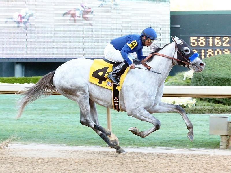 Cupid ruled out of Kentucky Derby
