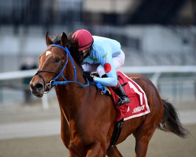 Capo Kane wins the Jerome (NYRA/Coglianese Photos/Chelsea Durand)