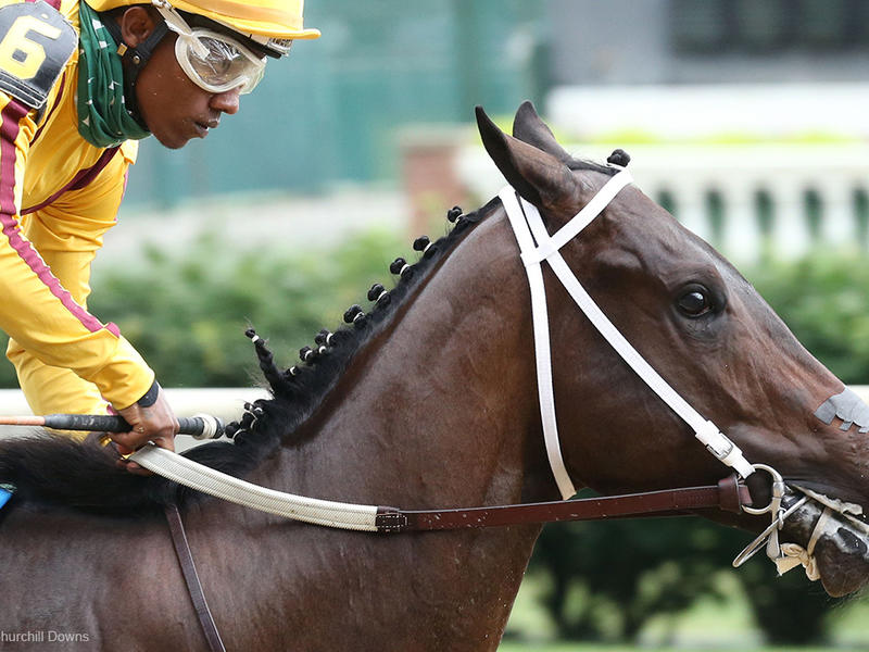 Cazadero (Coady Photo/Churchill Downs)