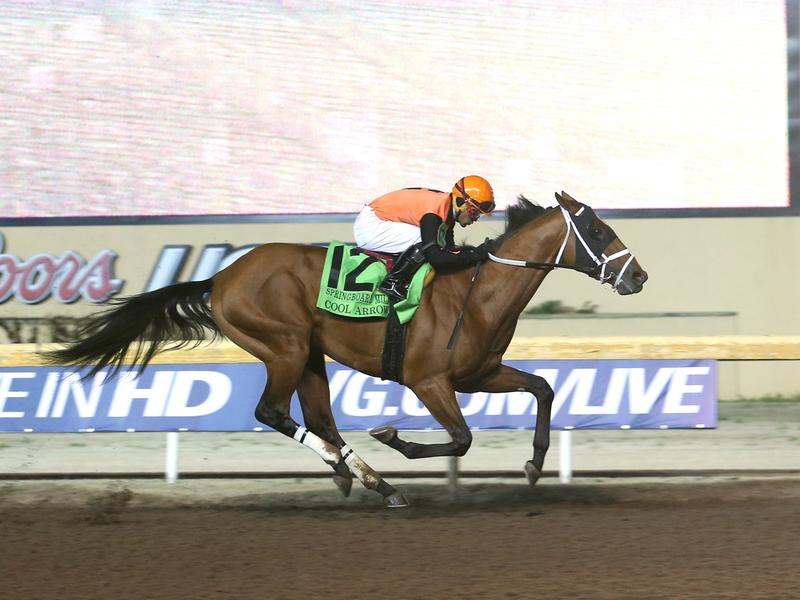 5 Fast Facts: Remington Springboard Mile