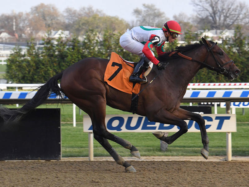 Country Grammer wins at Aquaduct (Coglianese Photo)