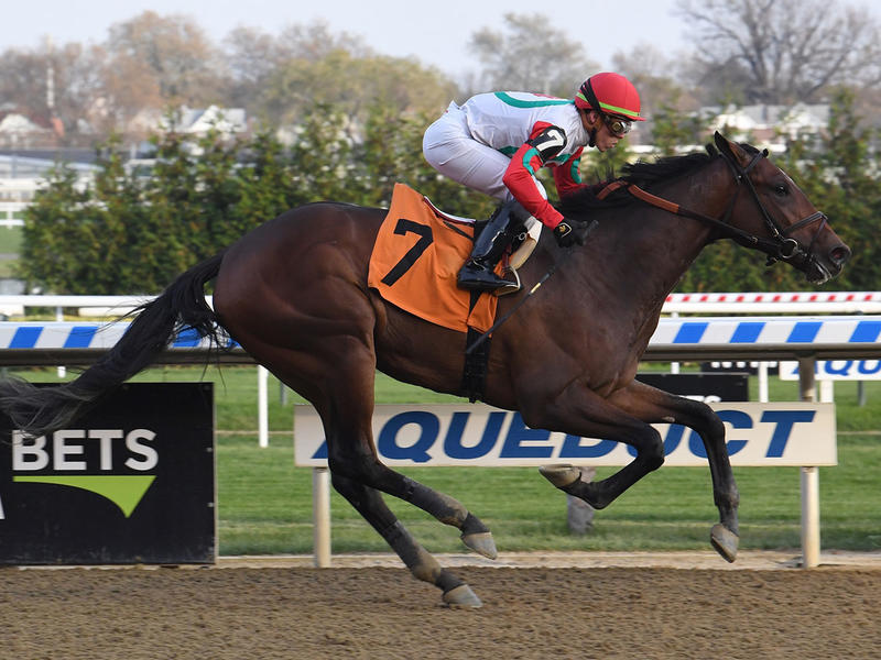 Country Grammer wins at Aqueduct in 2019