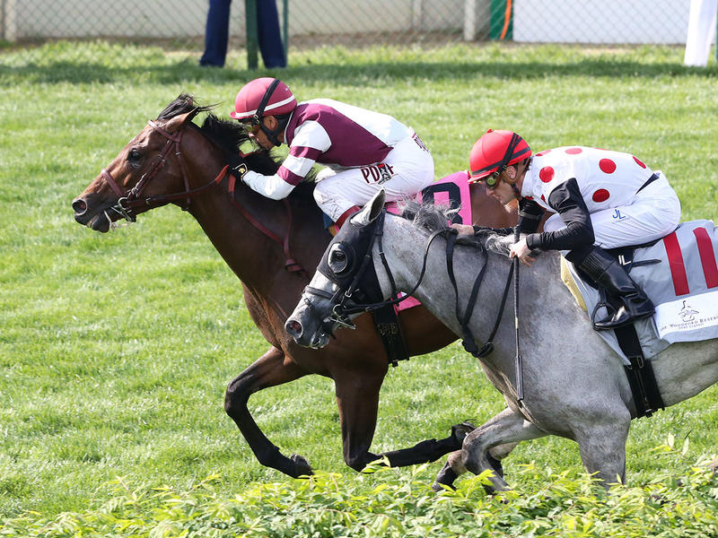 Kentucky Derby Day Undercard… News Image