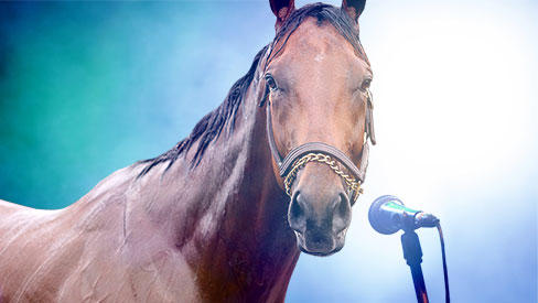 10 ways the Kentucky Derby trail is like American Idol