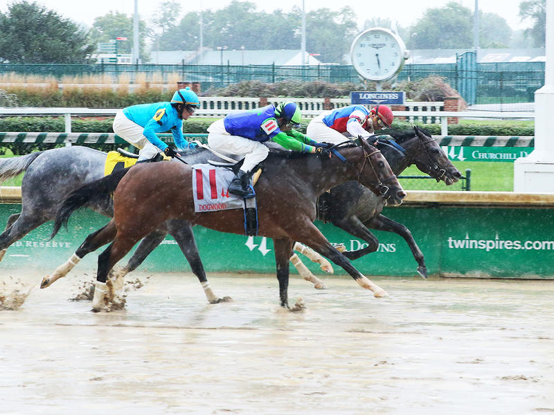 ​Divine Queen wins the 2018 Dogwood Stakes - Coady Photo/Churchill Downs