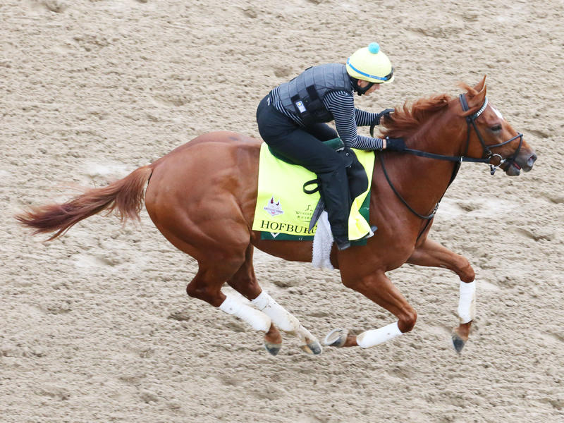 Kentucky Derby Update for Wednesday, April 25, 2018