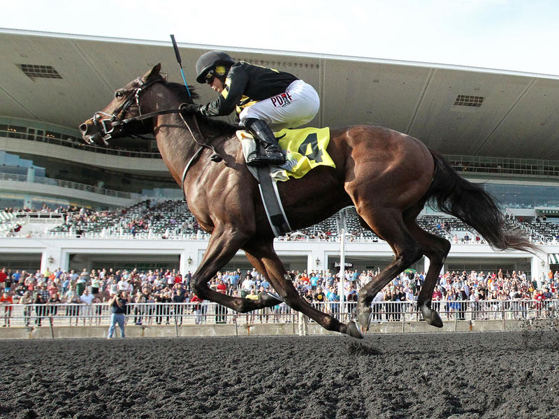 Flap Jack (Coady Photography/Arlington Park)
