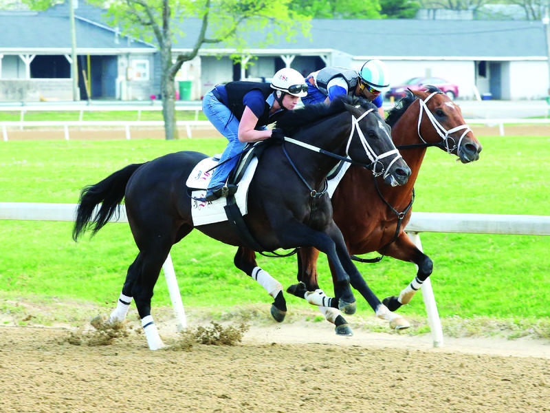 April 15 Kentucky Derby Update News Image