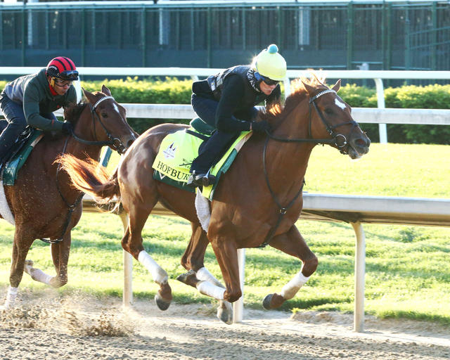 Kentucky Derby Update for… News Image