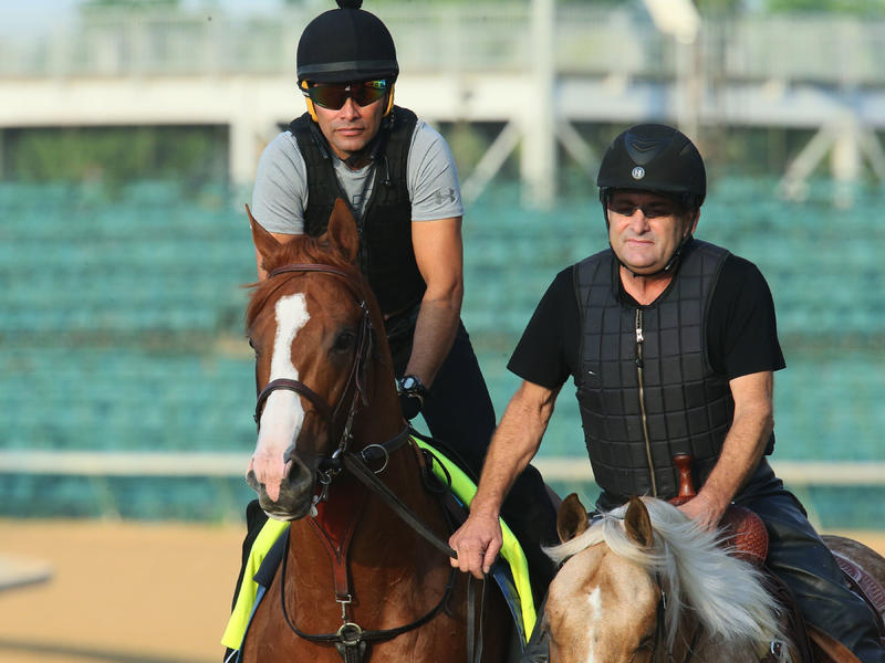 Justify Returns to the Track to Jog One Mile; Bravazo Breezes for Belmont Stakes