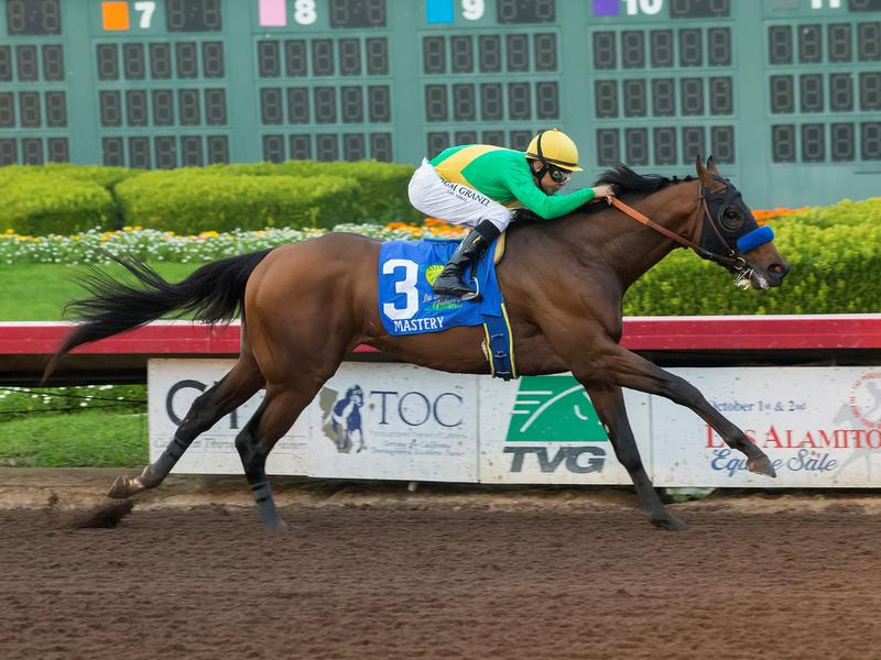 5 Fast Facts: Los Alamitos Futurity