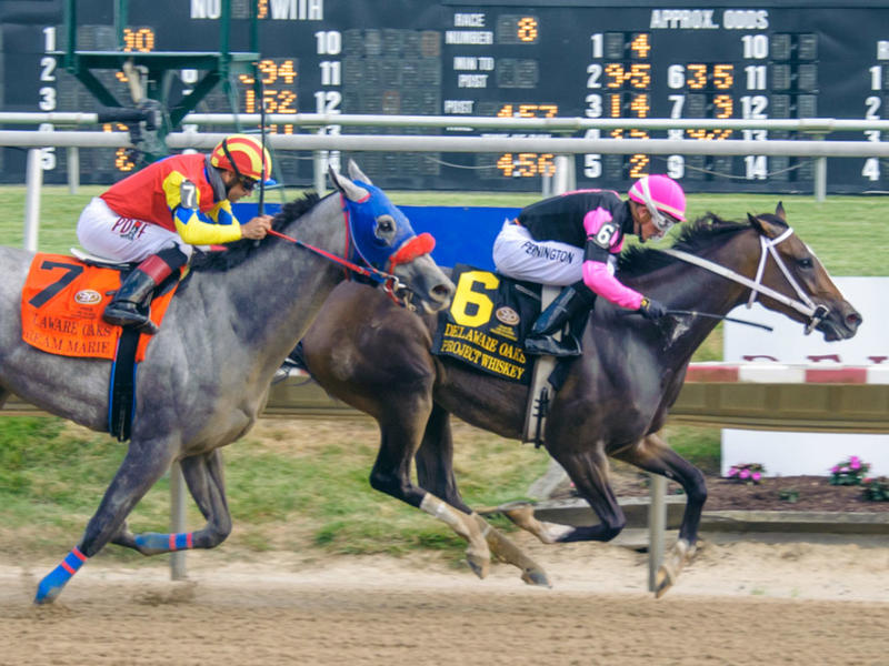 Project Whiskey stuns the Delaware Oaks on July 4, 2020 (Hoofprints, Inc)