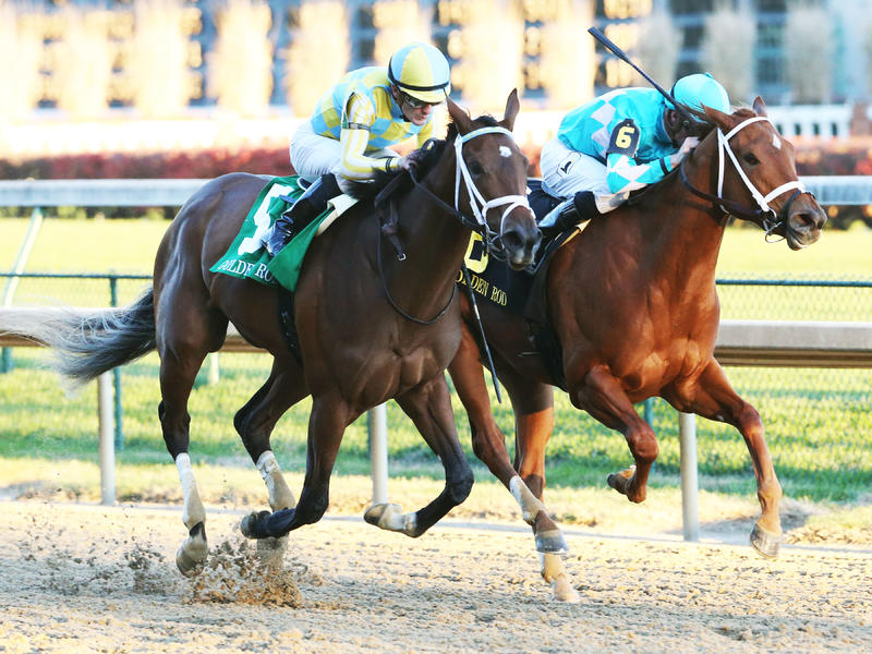 Road to Victory upsets Monomoy Girl in Golden Rod