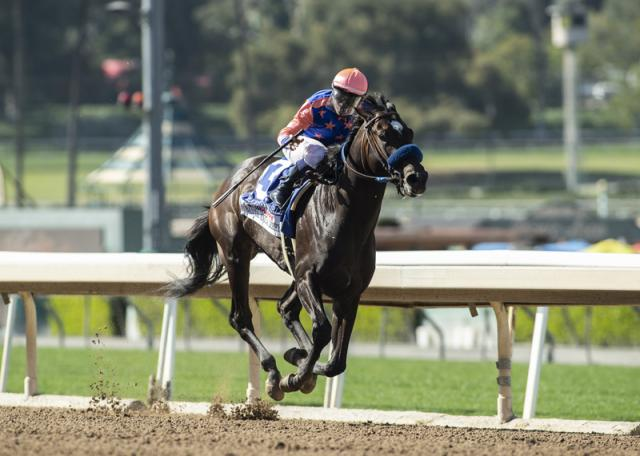 Rock Your World winning the Santa Anita Derby (G1) - © Benoit Photo