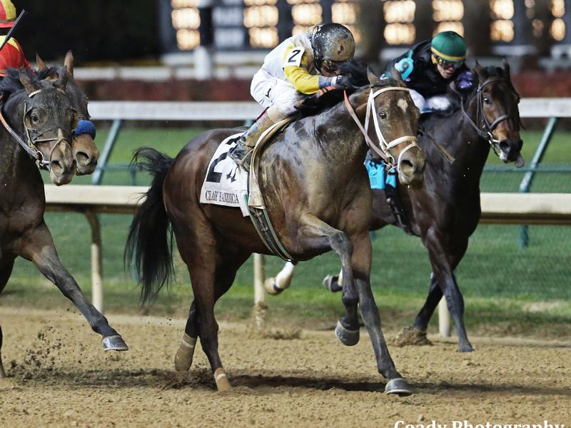 Study guide for Stephen Foster Stakes