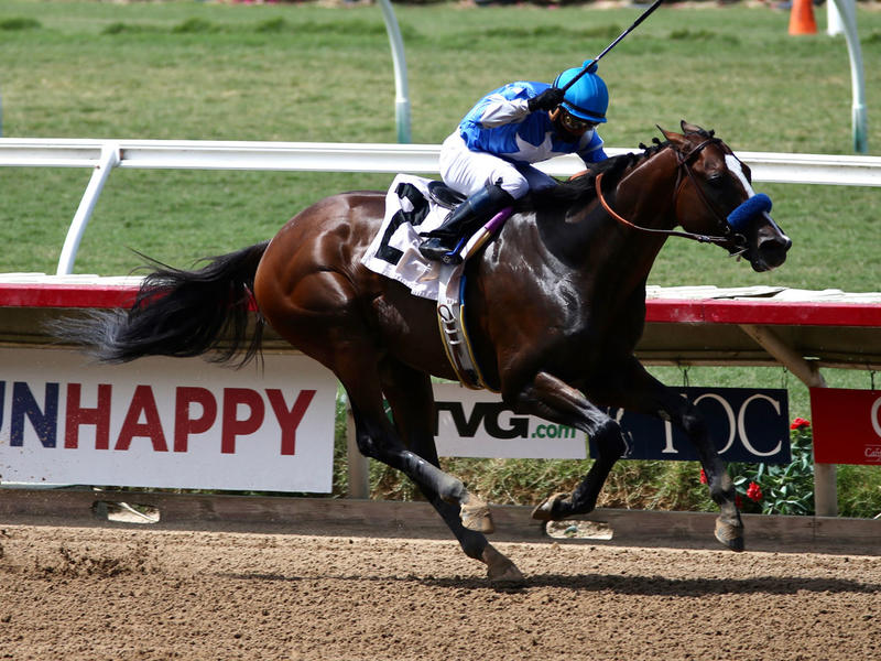 Thousand Words wins the Shared Belief S. (HorsePhotos)