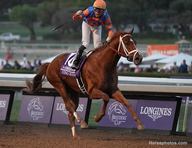 Kentucky Derby alumni VIno Rosso wins the Breeders' Cup Classic (Horsephotos.com/Cecilia Gustavsson)
