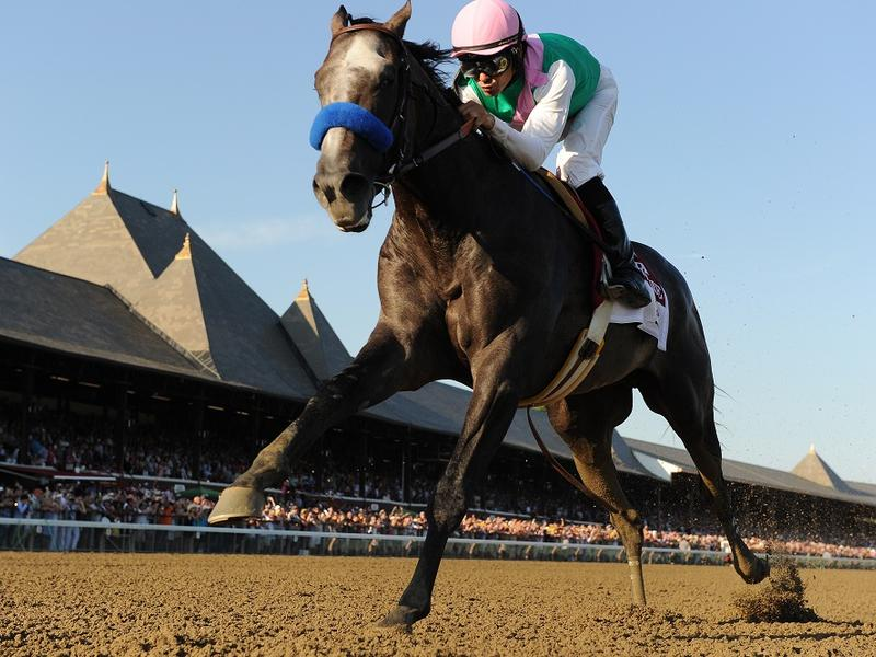 Arrogate crashes three-year-old… News Image