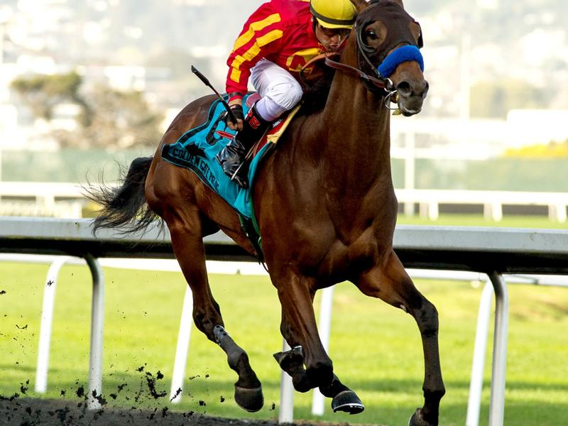 Azul Coast winning the El Camino Real Derby