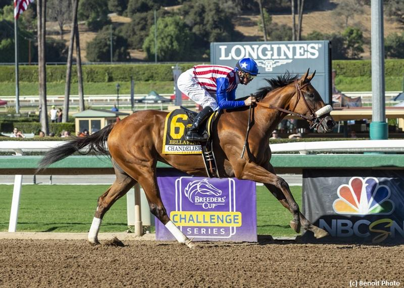 Bellafina bids to rebound in Santa Ynez